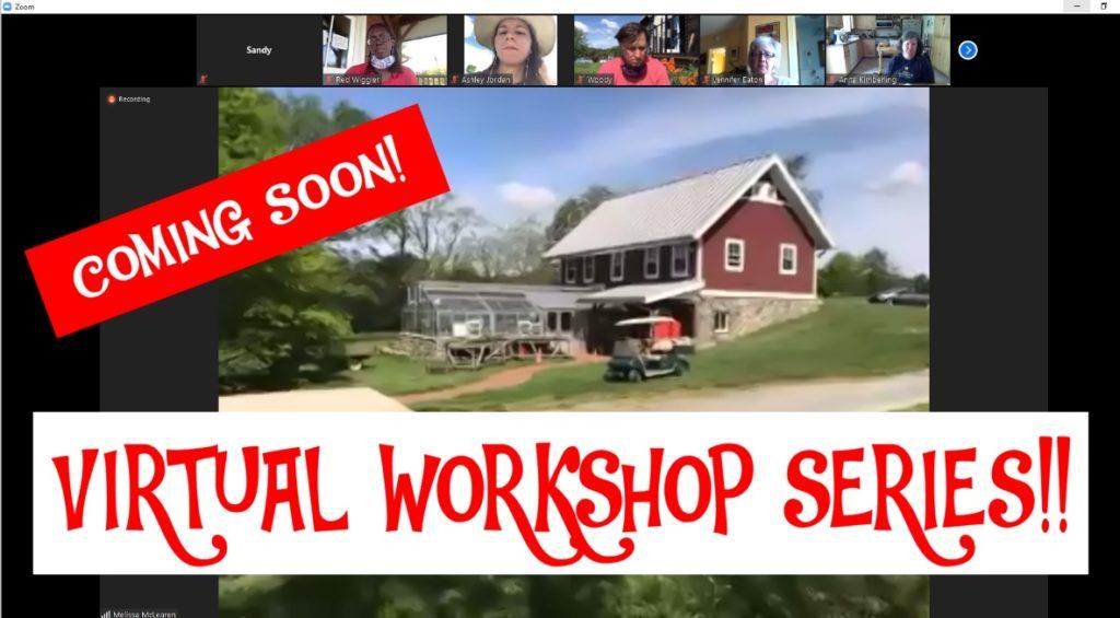 Virtual Workshop Series -- Image 1